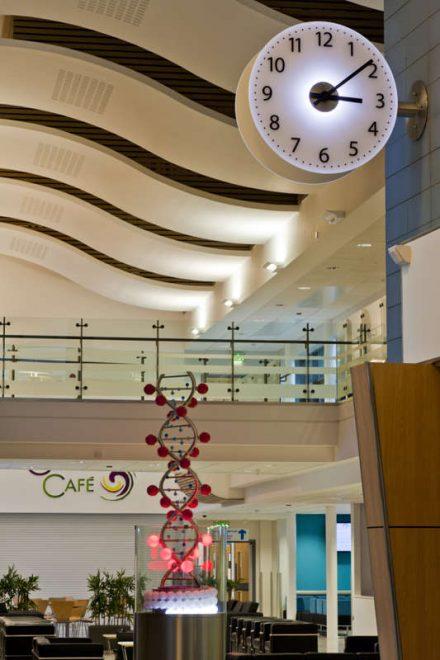 Redcar Primary Care Trust Hospital